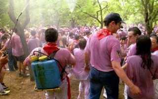 29 июня Фестиваль Винная битва