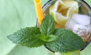 Чай со льдом: простые чайные рецепты
