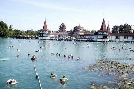 купание озеро Хевиз